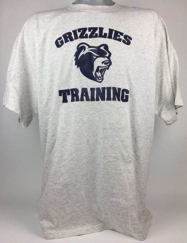 Hannover Grizzlies Training T-Shirt grey
