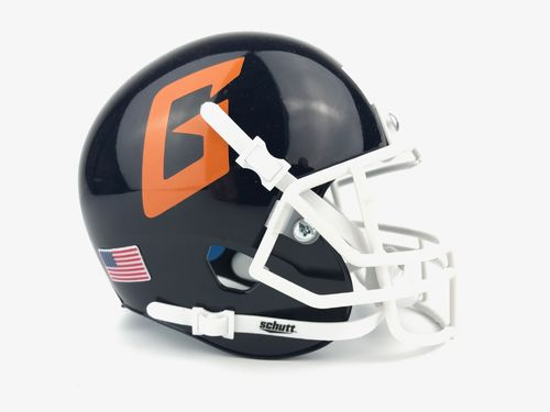 Hannover Grizzlies Mini Helm