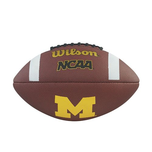 Michigan Wolverines NCAA Football