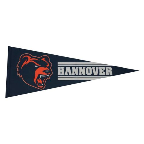 Hannover Grizzlies Wimpel
